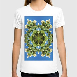 Hydrangea kaleidoscope - white flowers, green leaves, blue sky 161134 k6 T-shirt