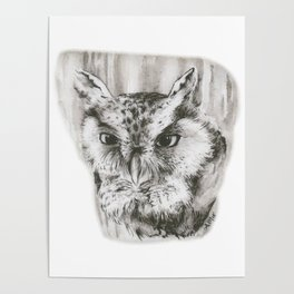Owl Stare by annmariescreations Poster