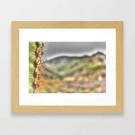 The Wise Arizona Cactus Framed Art Print