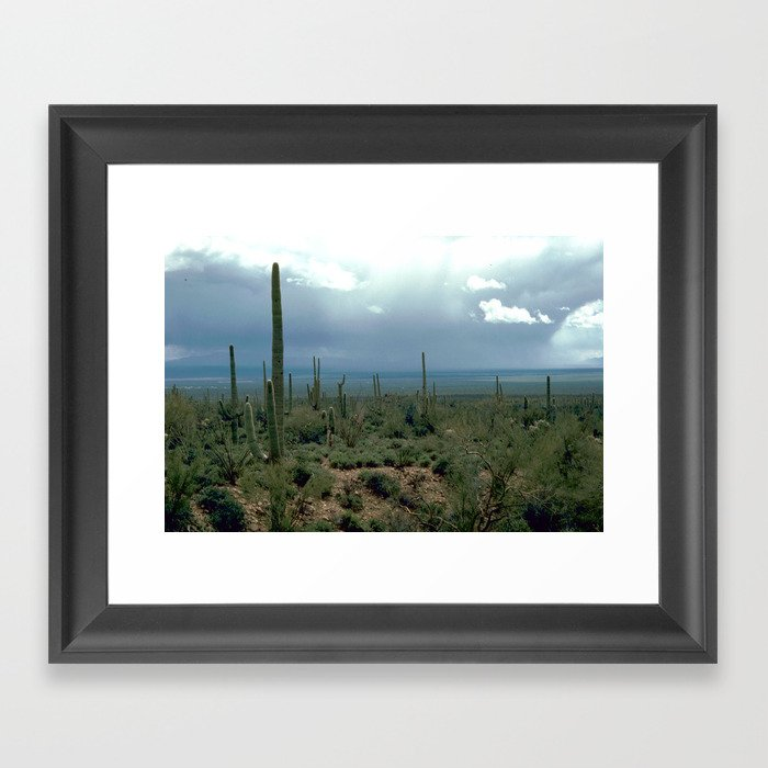 Arizona Desert and Cactuses Gerahmter Kunstdruck