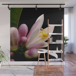 Lemon Buds Wall Mural