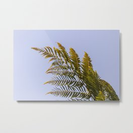 Reaching out for the last summer days Metal Print