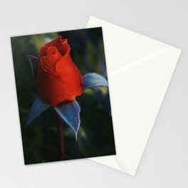 Buddy Rose Stationery Cards