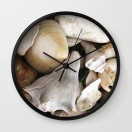 Seashell, Coquillages Wall Clock