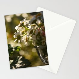 some more Stationery Cards