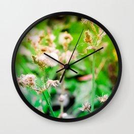 Nature photography dandelion II Wall Clock