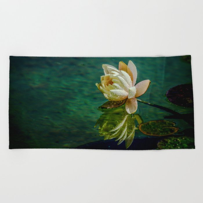 Water Lily after rain Beach Towel