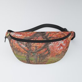 Red Vines Fanny Pack