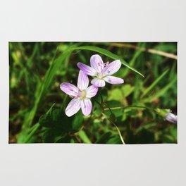 Spring Beauty 04 Rug