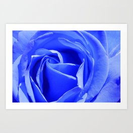 Blue Rose Art Print