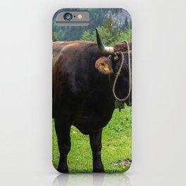 Swiss Cow iPhone Case