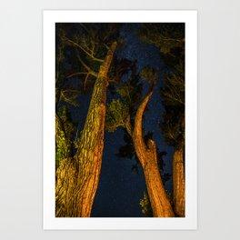 Space Trees Art Print
