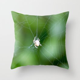 spider picture Throw Pillow