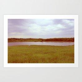 Pondside. Art Print
