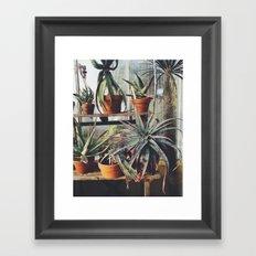 Cactus Wall Framed Art Print