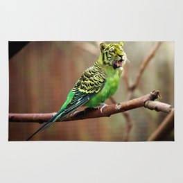 Tiger Parakeet Rug