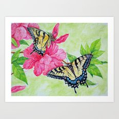 Tiger Swallowtai butterflies Art Print