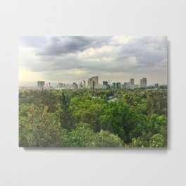 Viva Mexico City Metal Print