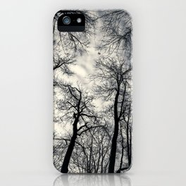 Sky-reaching Trees iPhone Case