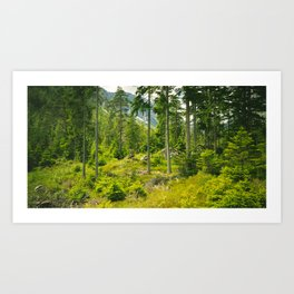 Green Dust v2 Art Print