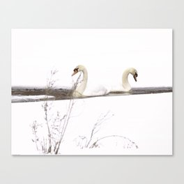 WINTER SWANS SYMETRY #2 Canvas Print