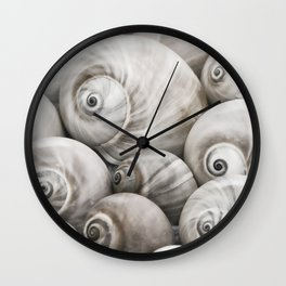 Shark's eye shell collection Wall Clock
