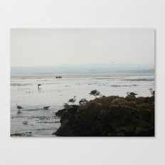 Monterey California Canvas Print