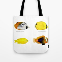 Plate of Tropical Fish Tote Bag