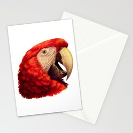 Scarlet Macaw Parrot realistic painting Stationery Cards
