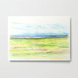 Sea meadow Metal Print