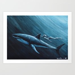 """The Shallows - """"He Took Her Back To The Shallows"""" 