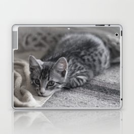 Our kitty on Quebec St. 02 Laptop & iPad Skin