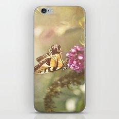 The Monarch iPhone & iPod Skin