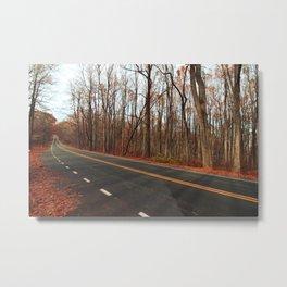 Shenandoah Road Metal Print