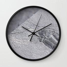 Utah - Trilobite Fossil Slab Wall Clock