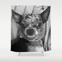 chihuahua Shower Curtains featuring Chihuahua by Coconuts & Shrimps