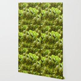 Claveles Wallpaper
