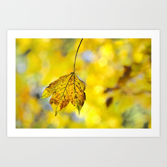 Yellow leave in yellow bokeh Art Print