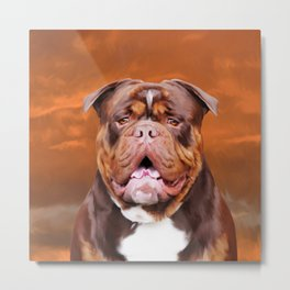 Bulldog Water Color Art Portrait Metal Print