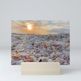 Sunset Shells Mini Art Print