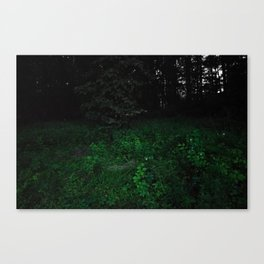 Isa's Place Canvas Print