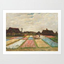 Van Gogh - Flower Beds in Holland / Bulb Fields Art Print