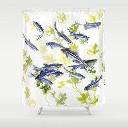 Fish Blue green fish design zebra fish, Danio aquarium Aquatic design underwater scene Shower Curtain