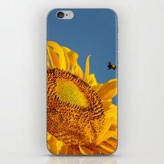 Mr. Yellow Britches iPhone & iPod Skin