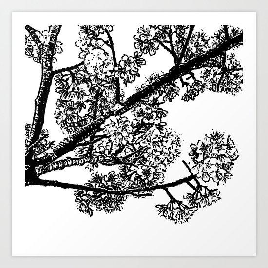 Cherry Blossom #6 Art Print