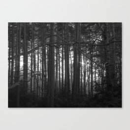 The magic of the woods Canvas Print