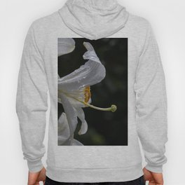 Raindrops on lily flower Hoody