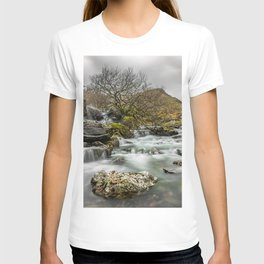 Lone Tree On The River T-shirt