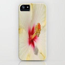 Beautiful Yellow Hibiscus Flower  iPhone Case