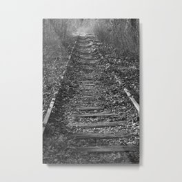tracks in the forest Metal Print